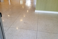Terrazzo floor - cleaned, sealed, and buffed.